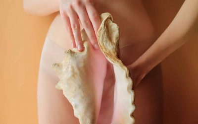 woman holding a conch shell near her underwear panties. women's health gynecology concept. nude beige color background. symbol female private parts genitals vulva vagina. birth planning sex life